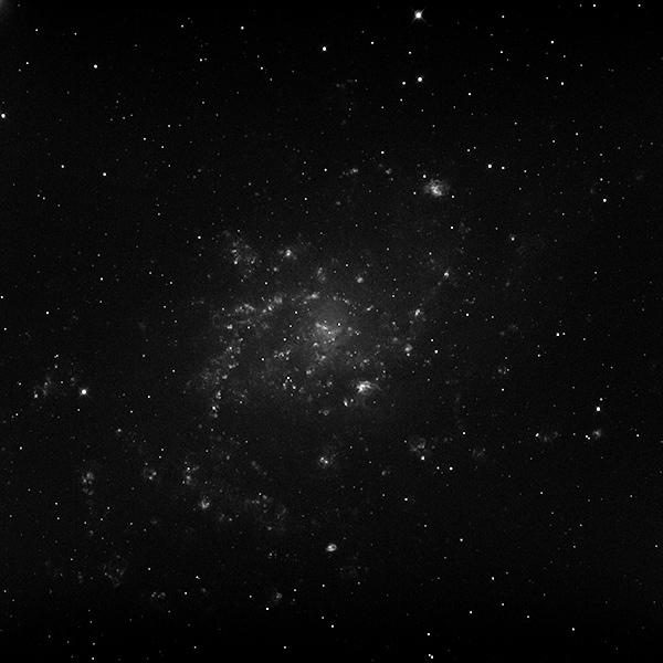 M33_Halpha_600
