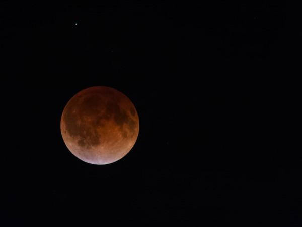 LunarEclipseApril14-15_1000
